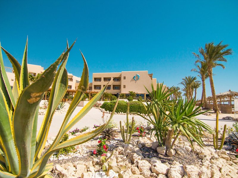 hoteleigenes Kitehouse, The Breakers - Diving and Surfing Lodge vom 2021-01-27 bis 2021-02-03 für 596 EUR p.P.